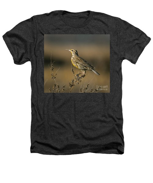 Meadowlark On Weed Heathers T-Shirt by Robert Frederick
