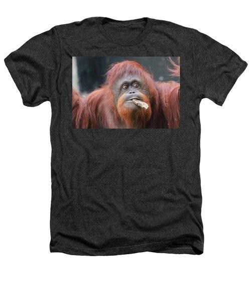 Orangutan Portrait Heathers T-Shirt by Dan Sproul