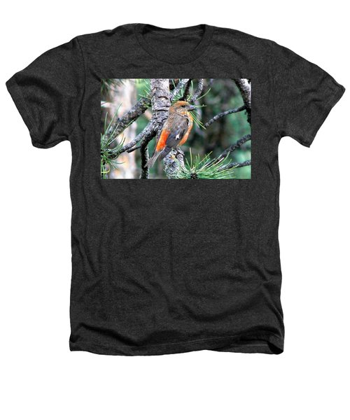 Red Crossbill On Pine Tree Heathers T-Shirt by Marilyn Burton