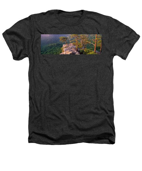 Trees On A Mountain, Buzzards Roost Heathers T-Shirt by Panoramic Images