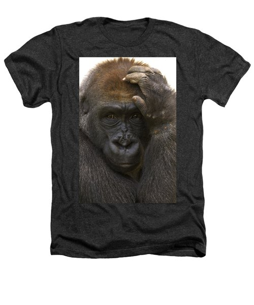 Western Lowland Gorilla With Hand Heathers T-Shirt by San Diego Zoo
