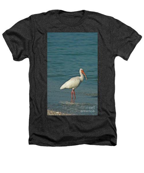 White Ibis Heathers T-Shirt by Cindi Ressler
