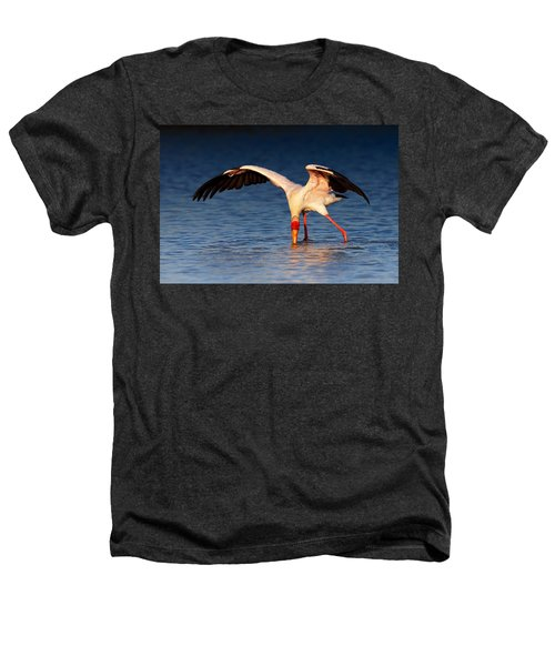 Yellow-billed Stork Hunting For Food Heathers T-Shirt by Johan Swanepoel