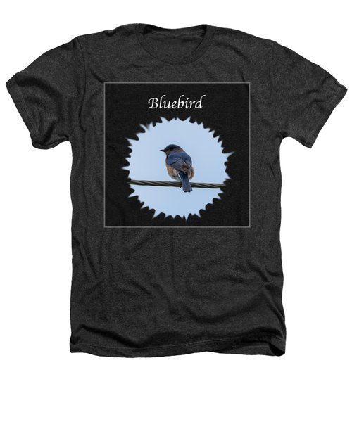 Bluebird Heathers T-Shirt by Jan M Holden