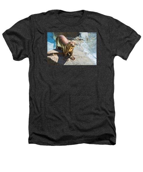 Catching Some Sun Heathers T-Shirt by Jamie Pham