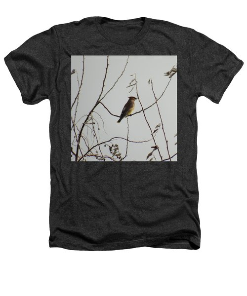 Cedar Wax Wing In Tree Heathers T-Shirt by Kenneth Willis