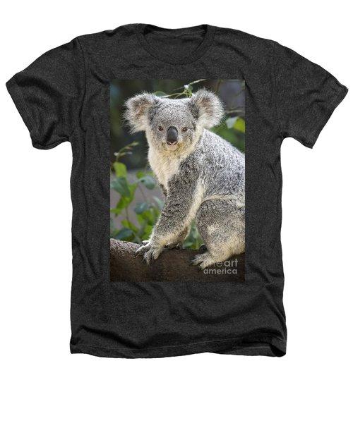 Female Koala Heathers T-Shirt by Jamie Pham