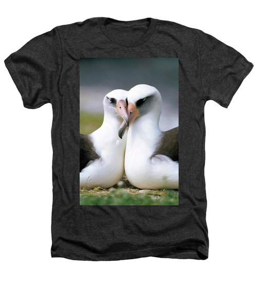 Laysan Albatross Phoebastria Heathers T-Shirt by Tui De Roy
