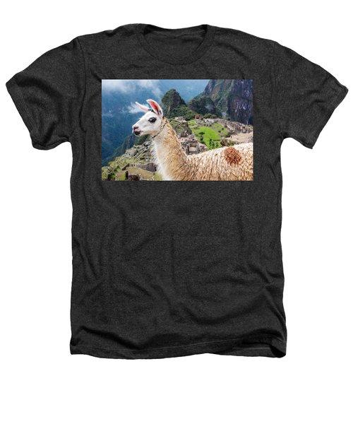 Llama At Machu Picchu Heathers T-Shirt by Jess Kraft