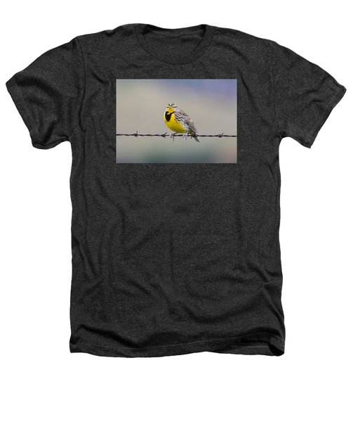 Meadowlark Stare Heathers T-Shirt by Marc Crumpler