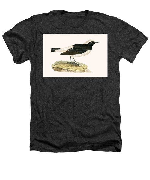 Pied Wheatear Heathers T-Shirt by English School