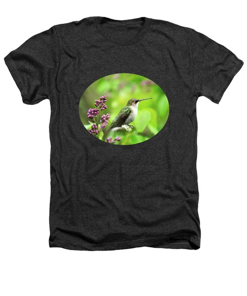 Spring Beauty Ruby Throat Hummingbird Heathers T-Shirt by Christina Rollo