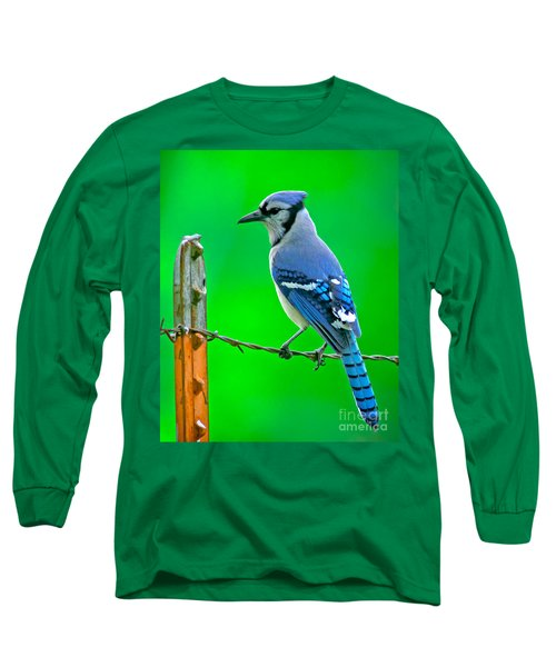 Blue Jay On The Fence Long Sleeve T-Shirt by Robert Frederick