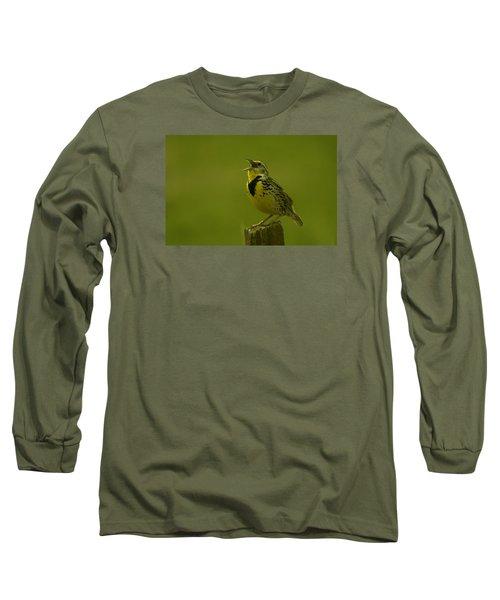 The Meadowlark Sings Long Sleeve T-Shirt by Jeff Swan