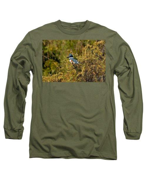 Belted Kingfisher Female Long Sleeve T-Shirt by Anthony Mercieca