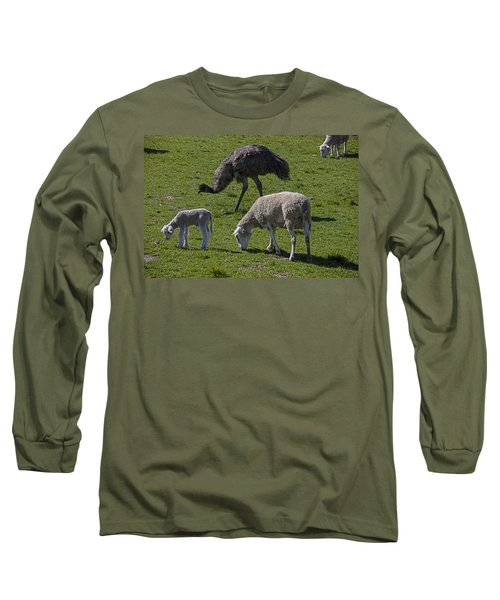 Emu And Sheep Long Sleeve T-Shirt by Garry Gay