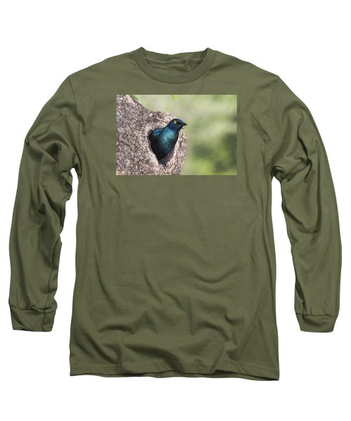 Greater Blue-eared Glossy-starling Long Sleeve T-Shirt by Andrew Schoeman