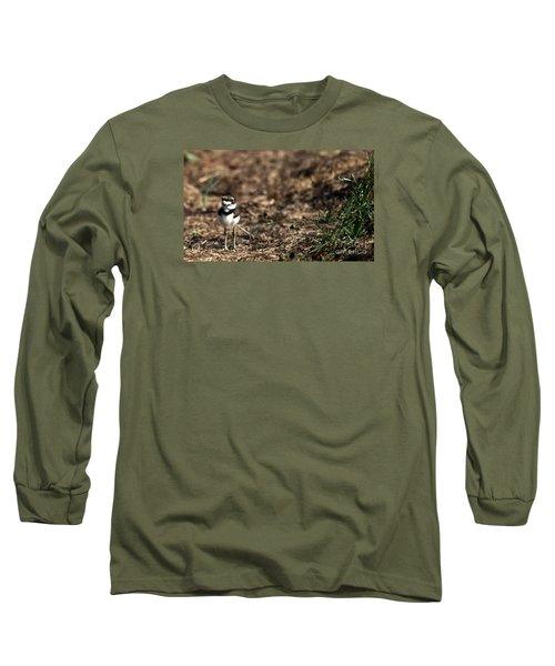 Killdeer Chick Long Sleeve T-Shirt by Skip Willits