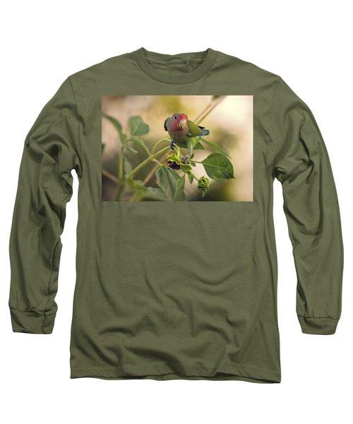 Lovebird On  Sunflower Branch  Long Sleeve T-Shirt by Saija  Lehtonen