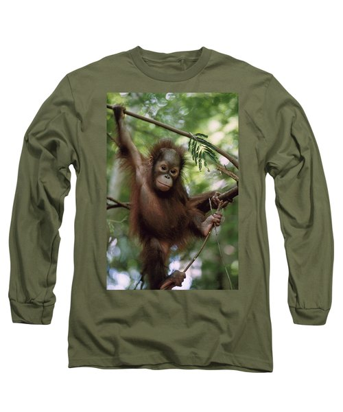 Orangutan Infant Hanging Borneo Long Sleeve T-Shirt by Konrad Wothe