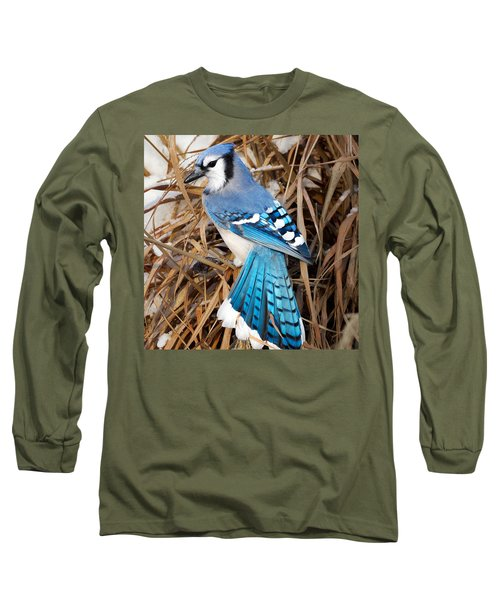 Portrait Of A Blue Jay Square Long Sleeve T-Shirt by Bill Wakeley