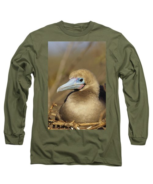 Red-footed Booby Incubating Eggs Long Sleeve T-Shirt by Tui De Roy