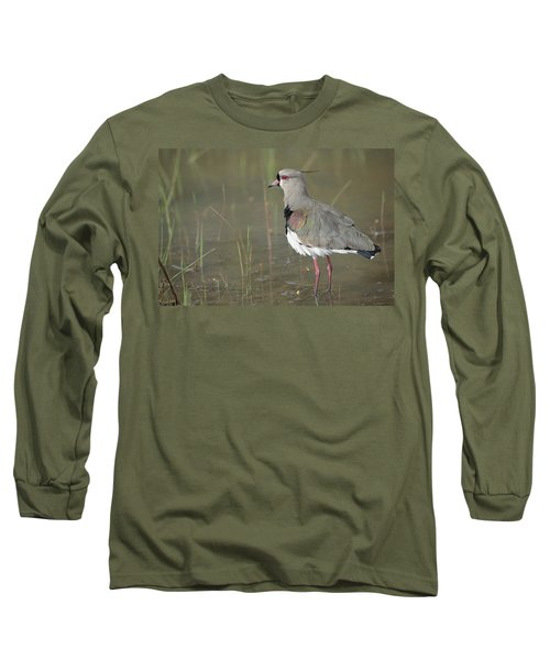 Southern Lapwing In Marshland Pantanal Long Sleeve T-Shirt by Tui De Roy
