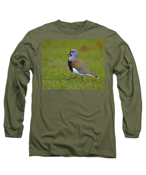 Strutting Lapwing Long Sleeve T-Shirt by Tony Beck