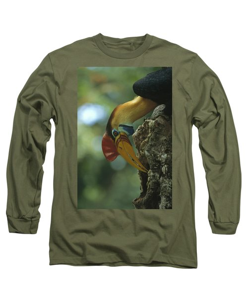 Sulawesi Red-knobbed Hornbill Male Long Sleeve T-Shirt by Tui De Roy