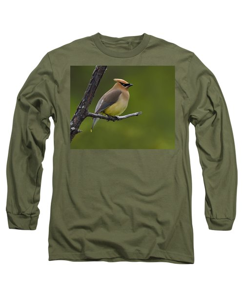 Wax On Long Sleeve T-Shirt by Tony Beck