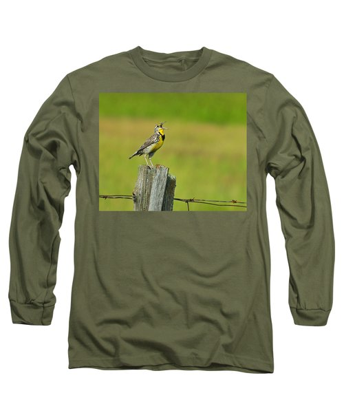 Western Meadowlark Long Sleeve T-Shirt by Tony Beck