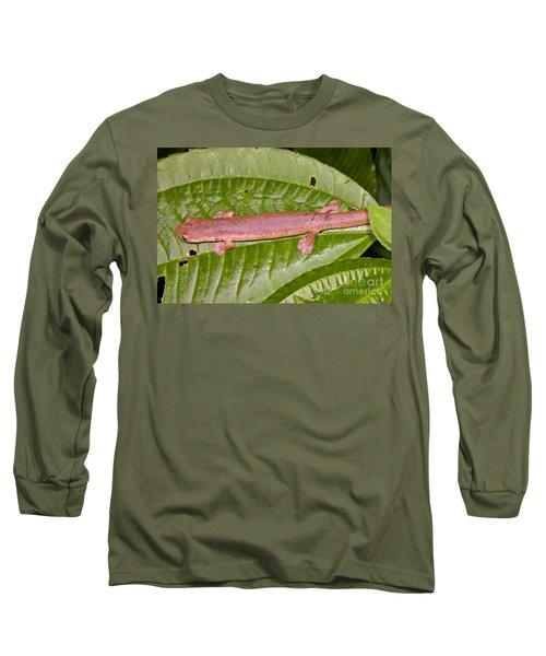 Bolitoglossine Salamander Long Sleeve T-Shirt by Dante Fenolio