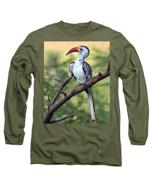 Red-billed Hornbill Long Sleeve T-Shirt by Tony Beck