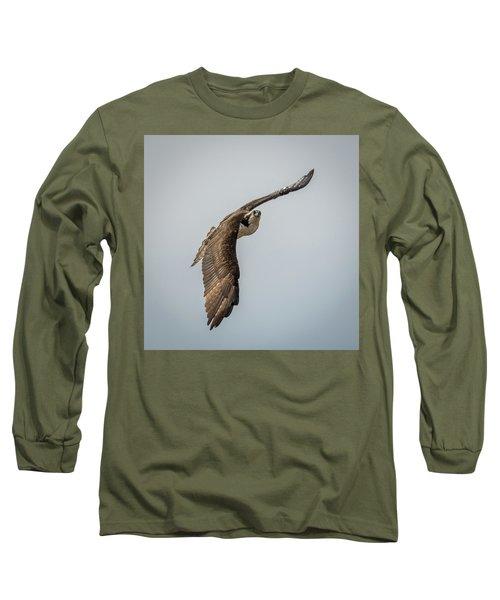 Osprey In Flight Long Sleeve T-Shirt by Paul Freidlund