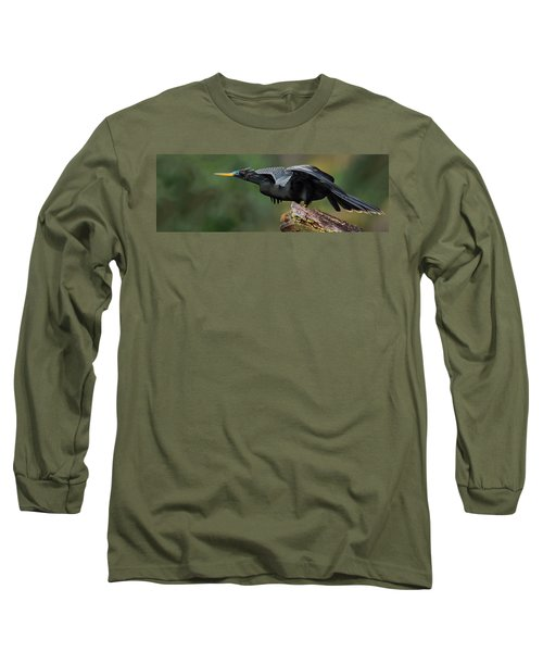 Anhinga Anhinga Anhinga, Costa Rica Long Sleeve T-Shirt by Panoramic Images