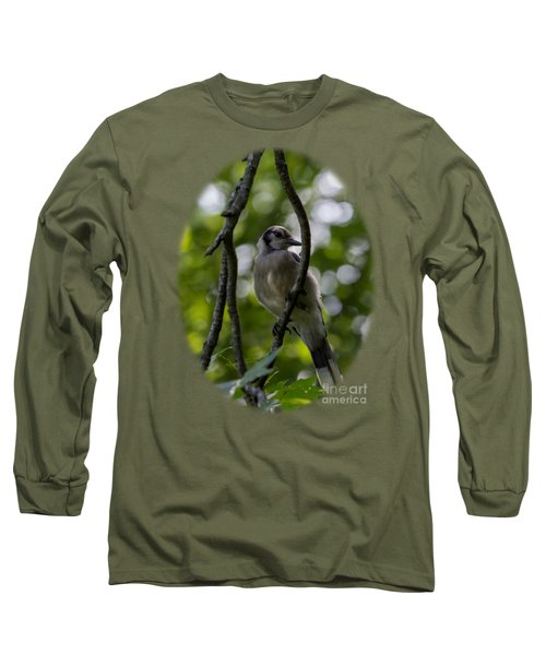 Afternoon Perch Long Sleeve T-Shirt by Brian Manfra