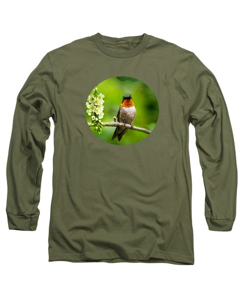 Male Ruby-throated Hummingbird With Showy Gorget Long Sleeve T-Shirt by Christina Rollo