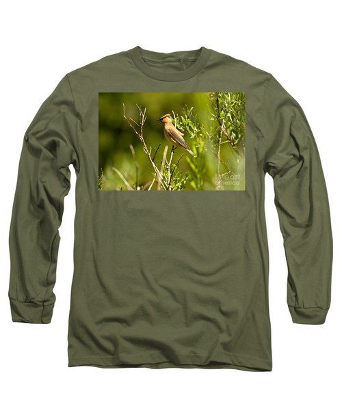 Cedar Waxwing At Glacier Long Sleeve T-Shirt by Adam Jewell