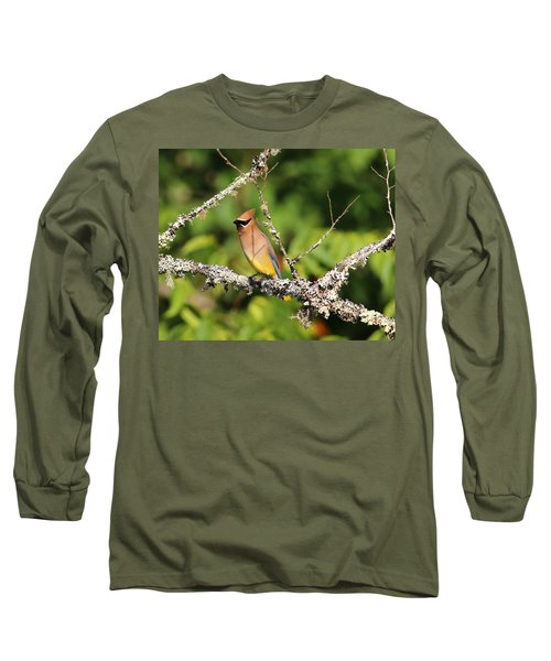 Cedar Waxwing  Long Sleeve T-Shirt by Carol R Montoya