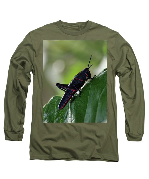 Eastern Lubber Grasshopper Long Sleeve T-Shirt by Richard Rizzo