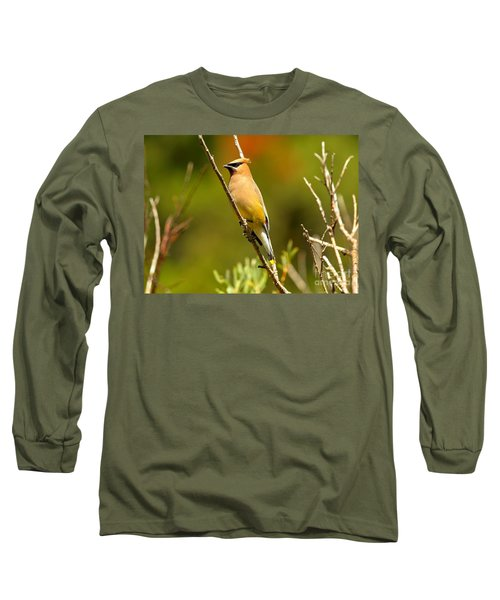 Glacier Cedar Waxwing Long Sleeve T-Shirt by Adam Jewell