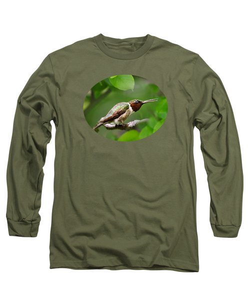Hummingbird Hiding In Tree Long Sleeve T-Shirt by Christina Rollo