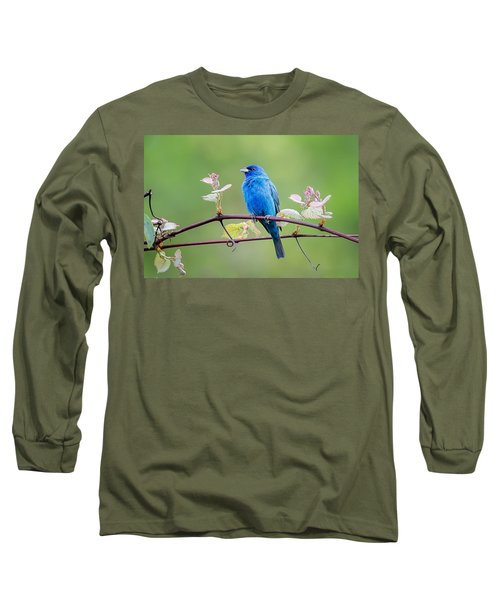 Indigo Bunting Perched Long Sleeve T-Shirt by Bill Wakeley