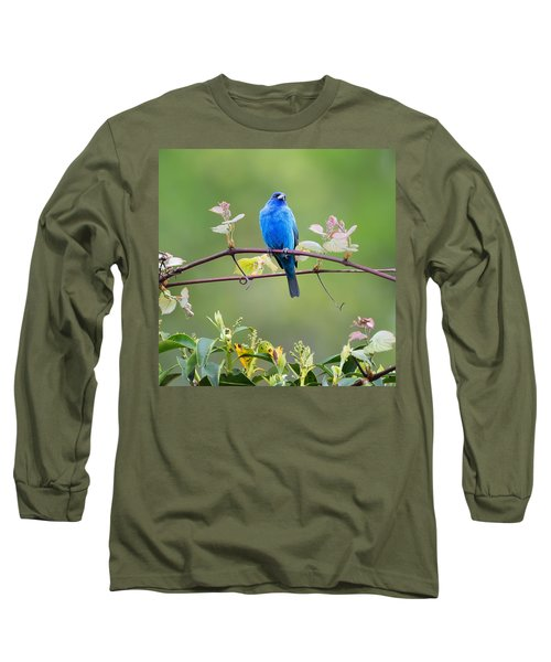Indigo Bunting Perched Square Long Sleeve T-Shirt by Bill Wakeley