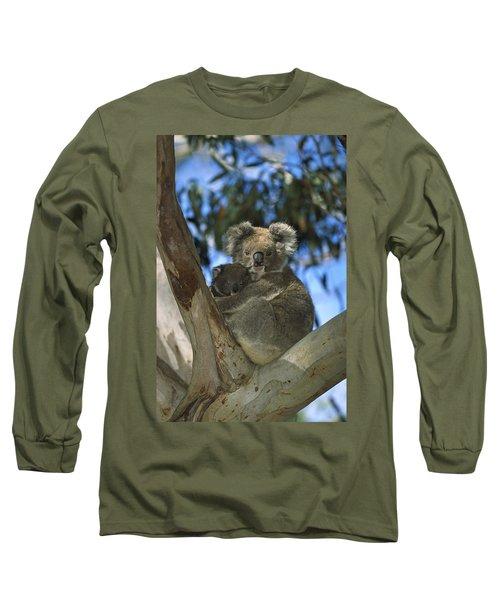 Koala Phascolarctos Cinereus Mother Long Sleeve T-Shirt by Konrad Wothe