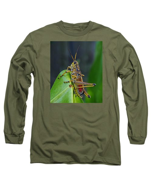 Lubber Grasshopper Long Sleeve T-Shirt by Richard Rizzo