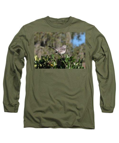 Northern Mockingbird Long Sleeve T-Shirt by Carol Groenen