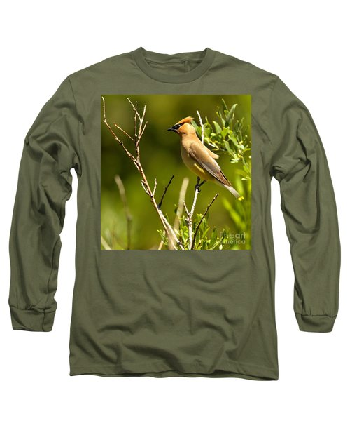 Perfectly Perched Long Sleeve T-Shirt by Adam Jewell