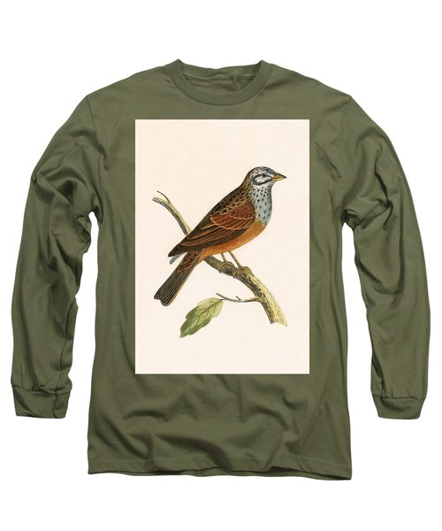 Striolated Bunting Long Sleeve T-Shirt by English School