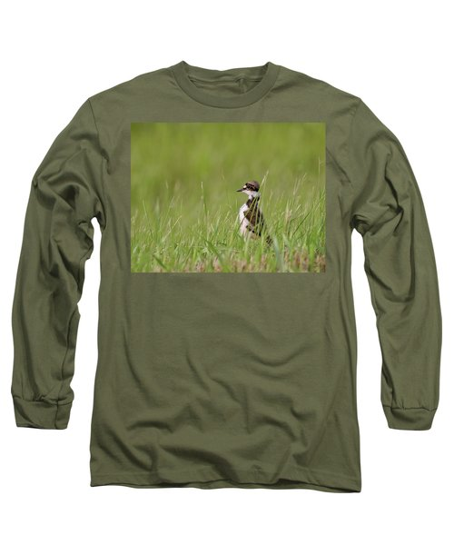 Young Killdeer In Grass Long Sleeve T-Shirt by Mark Duffy